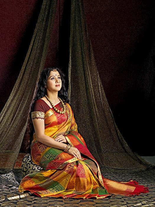 devayani in saree photo gallery