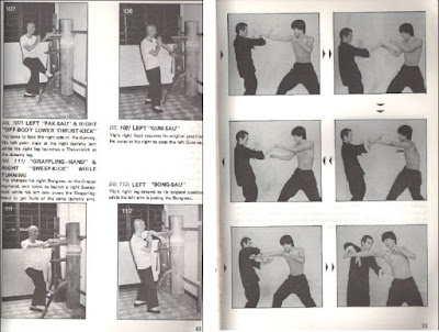 Libro de Muk Yan Chong o muñeco de madera, del Maestro Yip Man