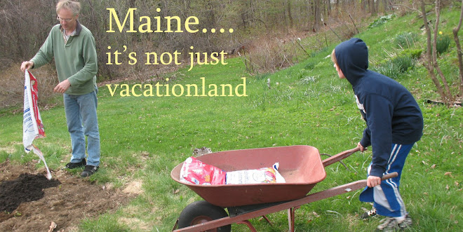 Maine... It's Not Just Vacationland