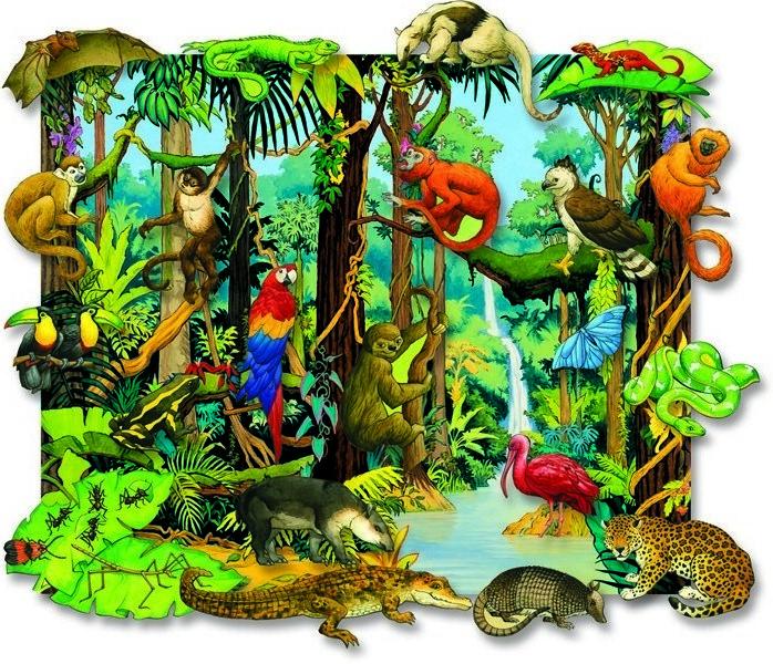 Camouflage rainforest animals