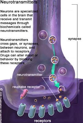 Prozac and tramadol