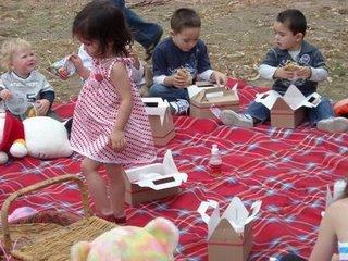 [picnic2]