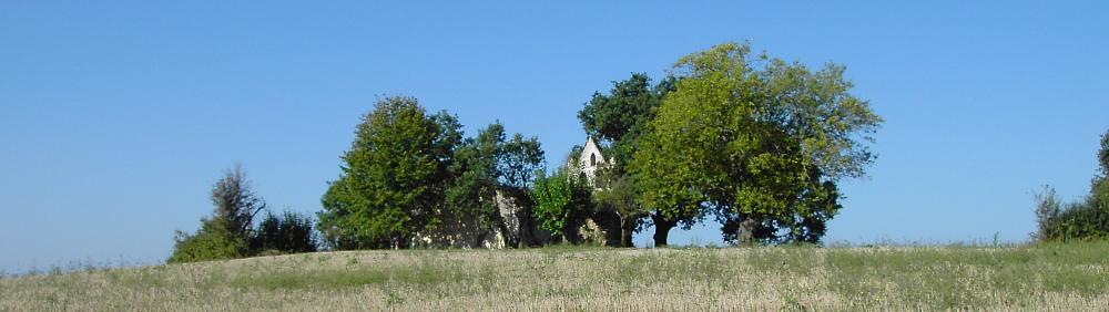 Sauvetage de l'église de St Pierre du Puy