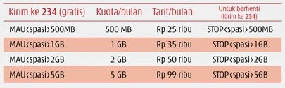 biaya internet murah 3