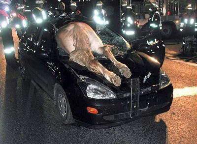 www.zona ketawa kita.blogspot.com+most+Strange+Car+Accident+%25285%2529 foto foto kecelakaan mobil yang unik