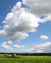 Wolkengedicht