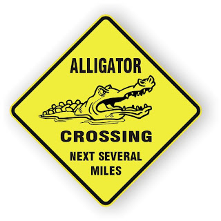 alligator crossing