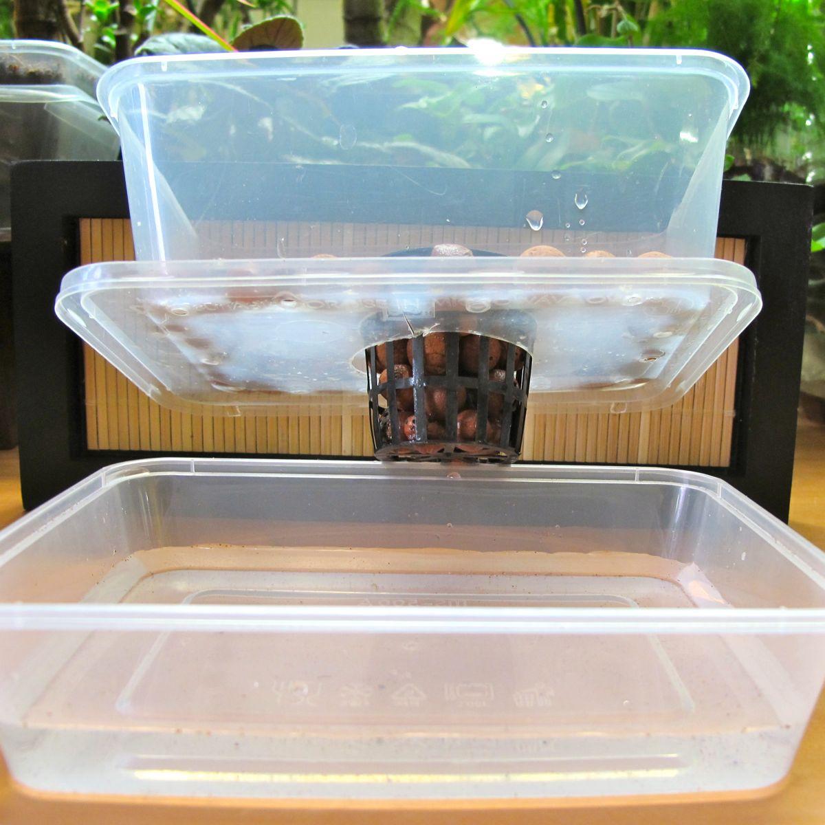 Plant in principe du bac r serve d 39 eau par capillarit - Bac a reserve d eau ...