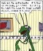 Argyle Sweater, Divorce Mantis Style