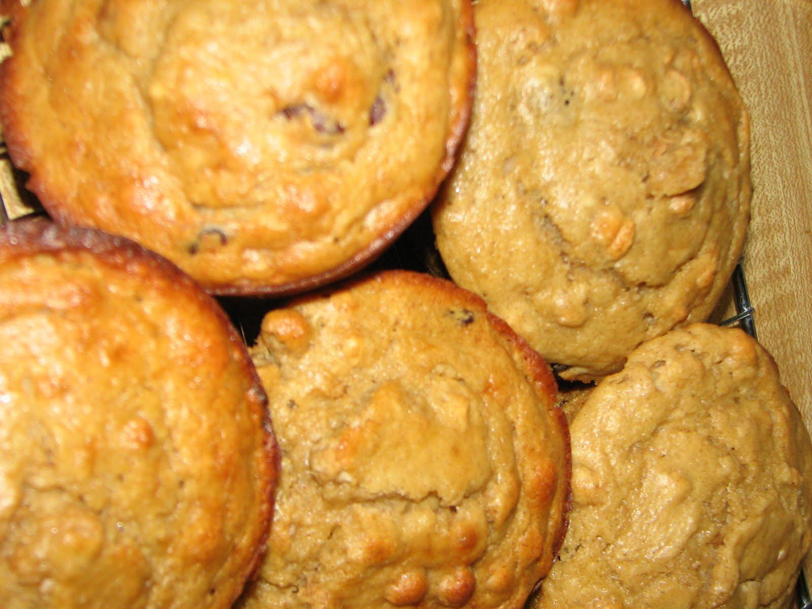 [muffins+and+animals+063.jpg]