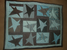 Buggy Barn Crazy Star Quilt