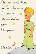 il piccolo principe-S.excupéry
