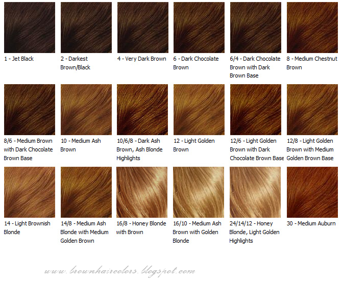 Brown Hair ColorsHair ColorsBrown Hair Coloring Tips Hair Color Chart