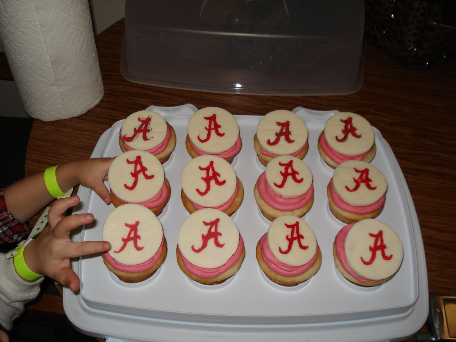 Cupcakes Candy and Roll Tide Life Cake Whimsy
