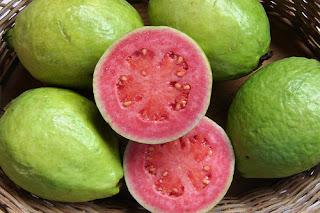buah jambu biji merah