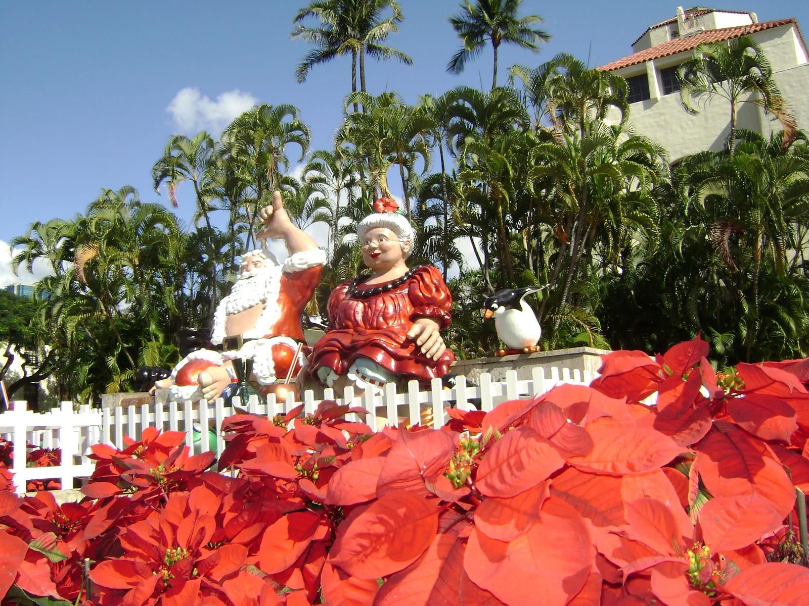 Gail M Baugniet Author CHRISTMAS IN HONOLULU HAWAII