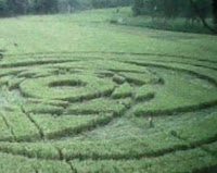 VIDEO CARA MEMBUAT CROP CIRCLE