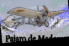 Pequeños aeromodelos