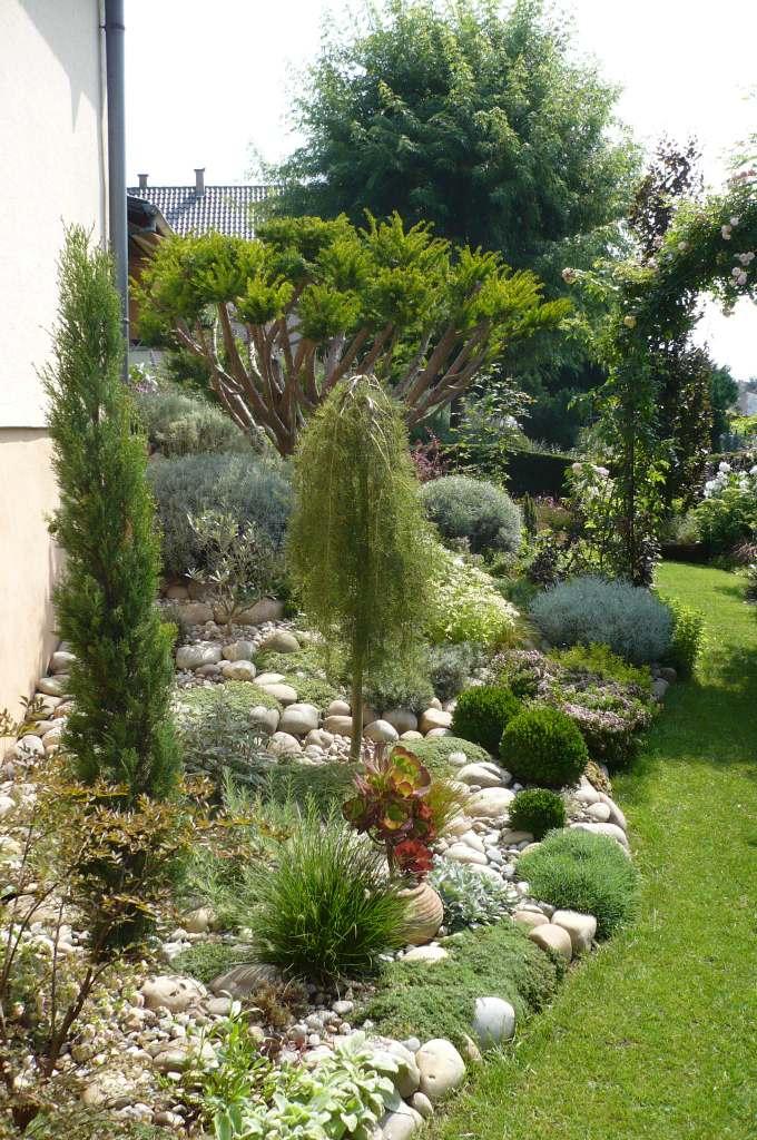 Balades dans de beaux jardins jardin citadin for Beaux arbres de jardin