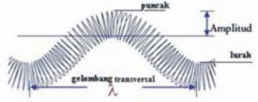 [Graphic3.jpg]