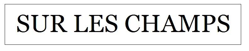 SUR LES CHAMPS