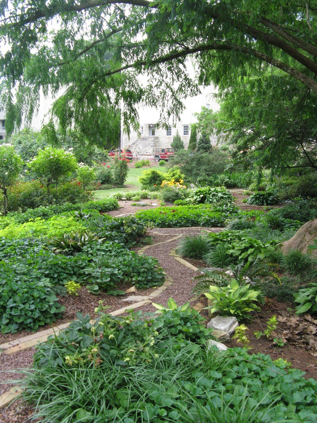 Raleigh art architecture urbanism urban oasis raleigh rose garden for Raleigh little theater rose garden