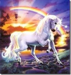 wedding wedding planning archived , Unicorn+Sunshine+Rainbow