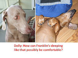 Dolly and Franklin Hamming it Up