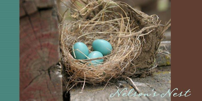 """Nelson""""s Nest"""