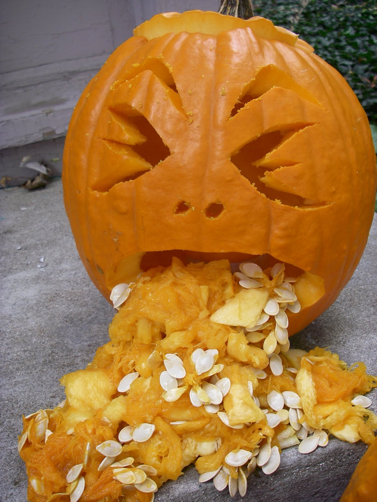 Drunk Pumpkin Throwing Up Food Beverage