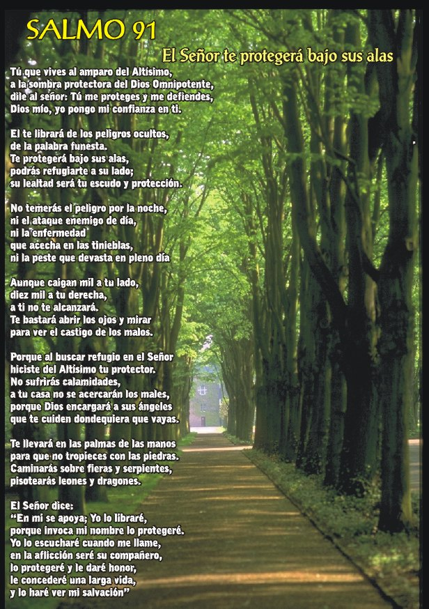 Imagenes Biblicas Del Salmo 91 - IMÁGENES CRISTIANAS