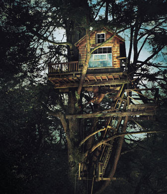 children's tree houses