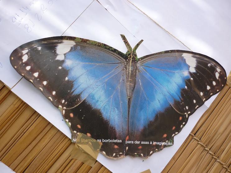 """""""Nós usamos as borboletas para dar asas à imaginação."""""""