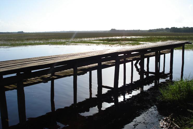 Pontes são fundamentais em nossas caminhadas