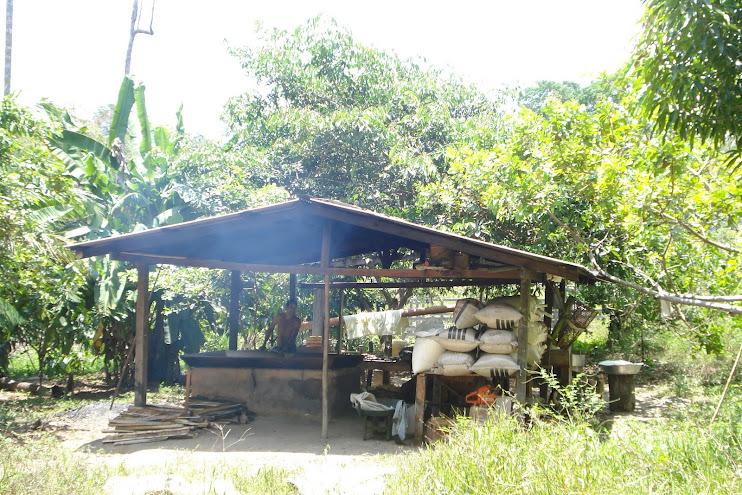 Casa de farinha no meio da floresta Amazônica
