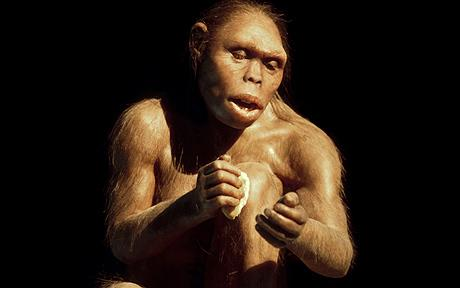 http://2.bp.blogspot.com/_SMSfqQsVk-g/S7erw1RZUYI/AAAAAAAADDk/XGF7Y7OeEfc/s1600/Di+Temukan+Spesies+Baru+Hominid+Nenek+Moyang+Manusia+Pertama+Kali.jpg