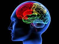 Cara+Melatih+Otak+untuk+Mempertaam+Daya+Ingatan Cara Melatih Otak untuk Mempertajam Daya Ingatan