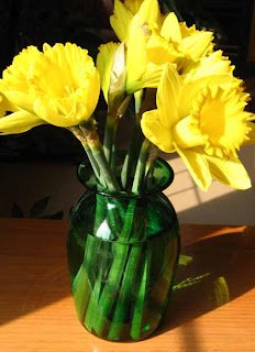 Celebrate Daffodil Days with Dr. Siegel