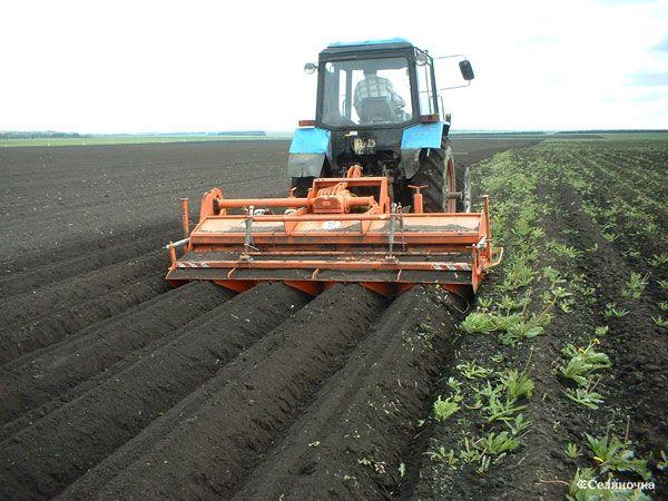Правительство представило планы модернизации аграрной структуры в России