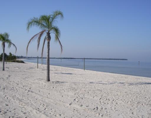 Apollo Beach Best Of South Shore