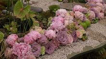Chelsea Flower show ..
