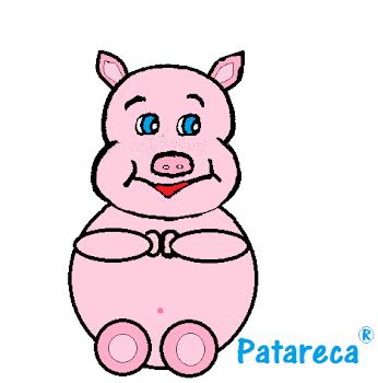 Porco Quinho