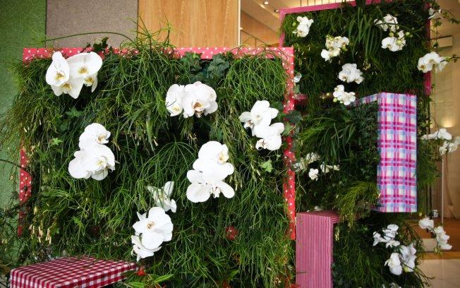 mini jardins verticais ? Doitri.com