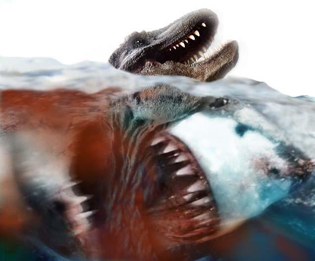 Megalodon Shark Eating