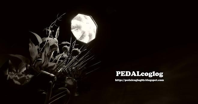 pedalcoglog