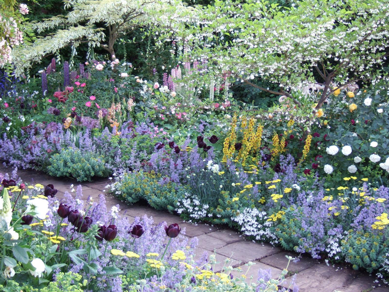 [24May07+Along+the+garden+path+in+Chris+Beardshaw]
