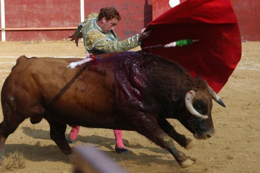 Corridas de Toros:La Cordura Catalana