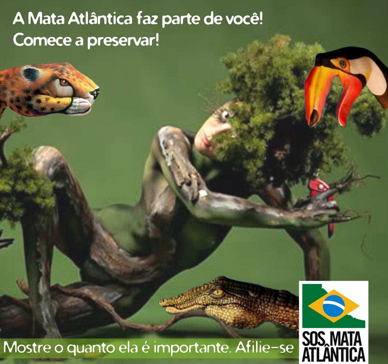 Resultado de imagem para SOS Amazônia