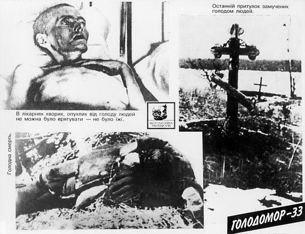 Экспонат экспозиции «Голодомор в фотодокументах» в музее советской оккупации.