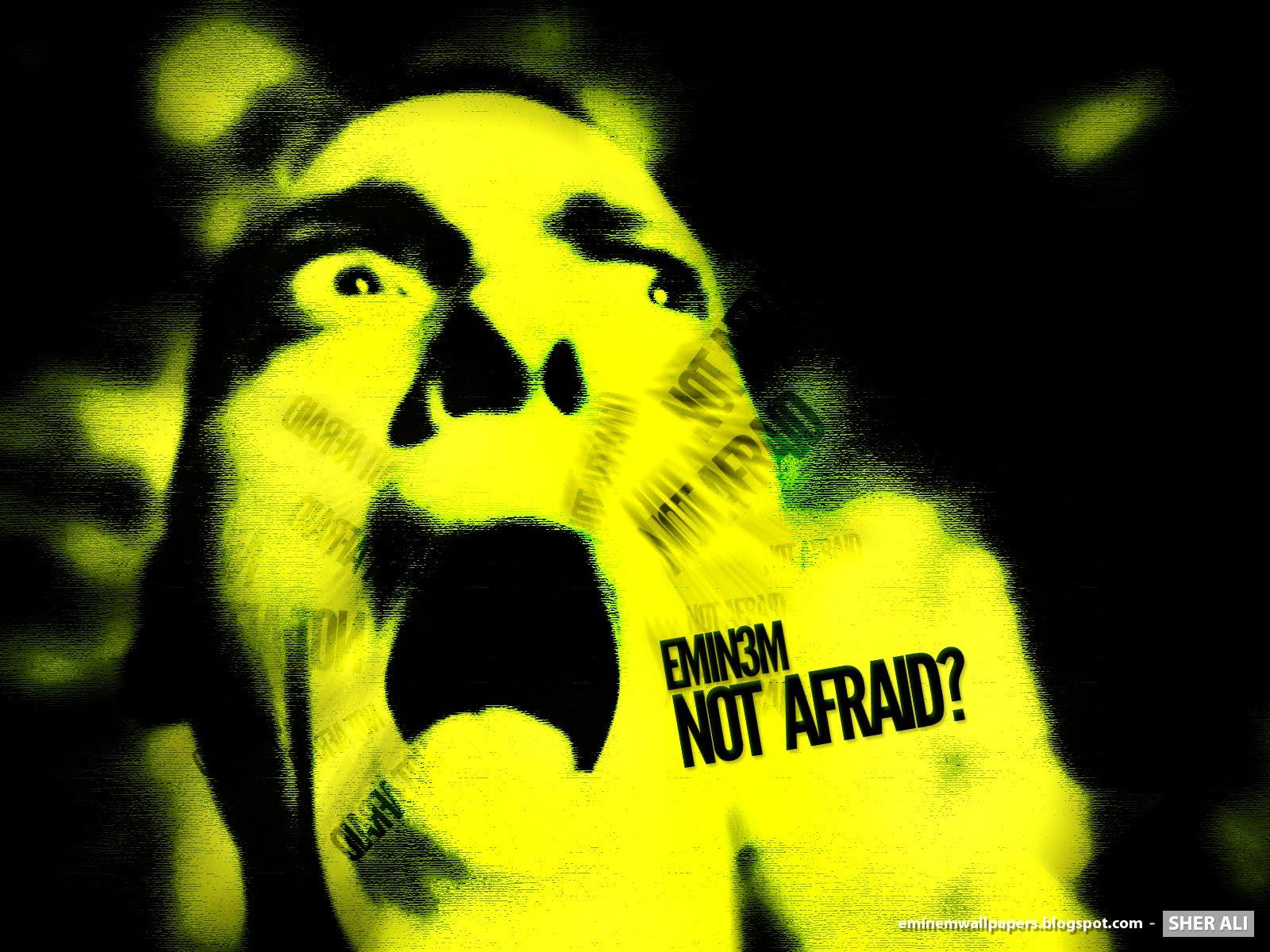 http://2.bp.blogspot.com/_STy5nejOM6k/S-BdGBlj3II/AAAAAAAAFI0/Ar8zIvFzeck/s1600/eminem+not+afraid.jpg